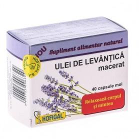 Ulei Levantica Macerat 40 cps Hofigal